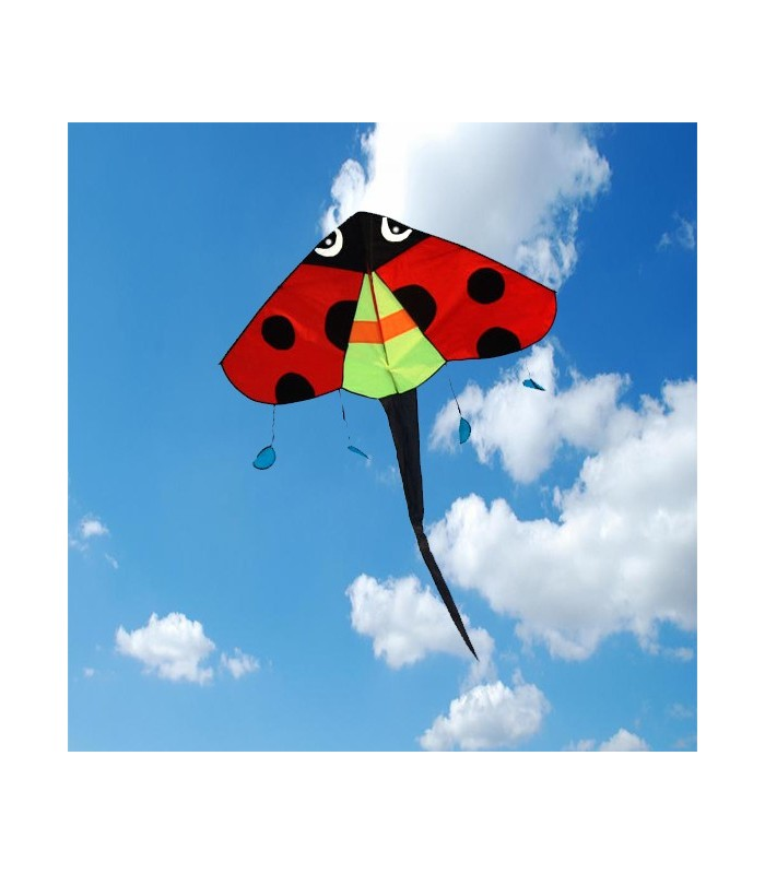 Ladybird Easy Flyer Kite