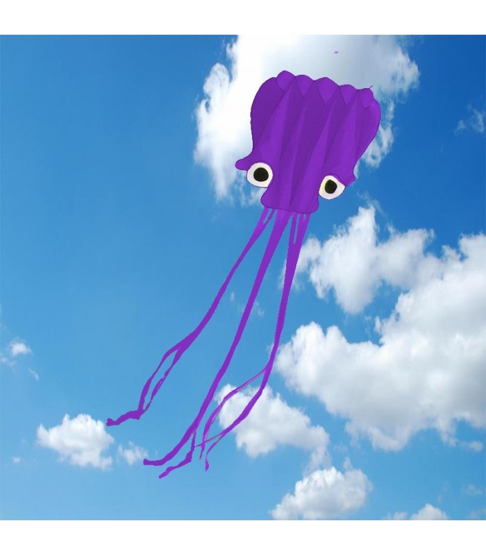 5m Octopus Soft Kite Purple