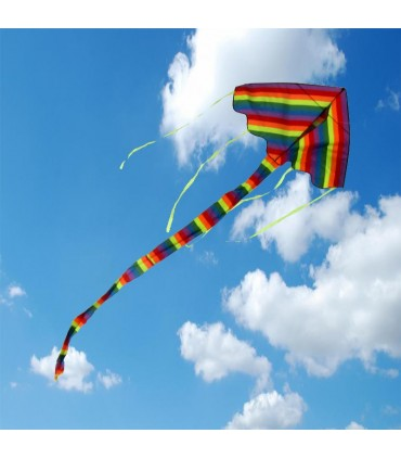 Rainbow Easy Flyer Kite - Large