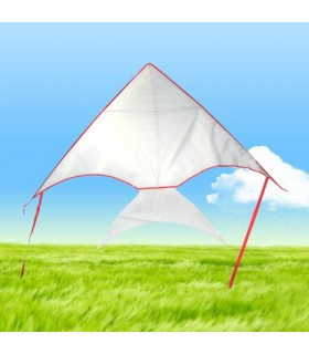 DIY Draw-it-yourself Fish Kite