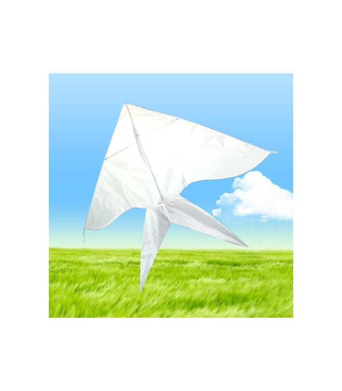 DIY Draw-it-yourself Bird Kite