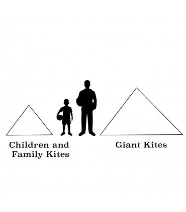 Children and family Kites