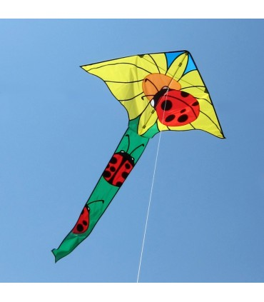 Single Line Kites