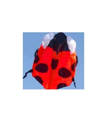 Soft and frameless Kites