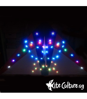 Arch Butterfly LED Night Kite 2.7m 132 Led