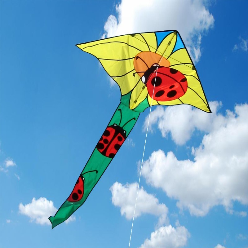 Ladybug Surefly Kite (Easy to fly)