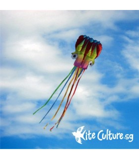 6m Gradient Octopus Soft Kite