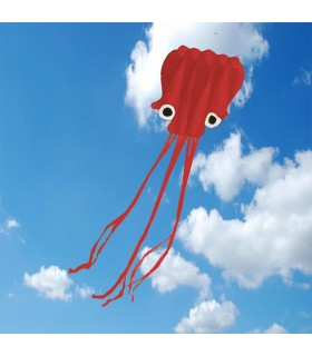 5m Red Octopus Soft Kite