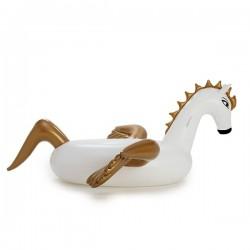 Pegasus Float