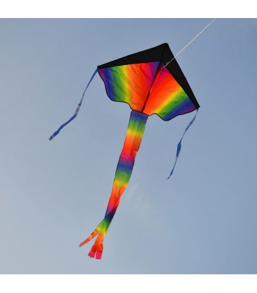 Tie Dye Easy Flyer Kite