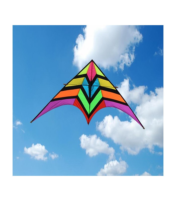 2.8m Giant Rainbow Fighter Delta Kite