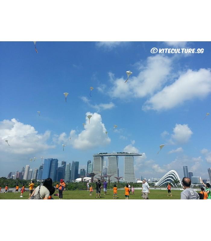 Diamond Kite Flying Workshop