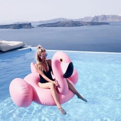 1.5m Pink Flamingo Float
