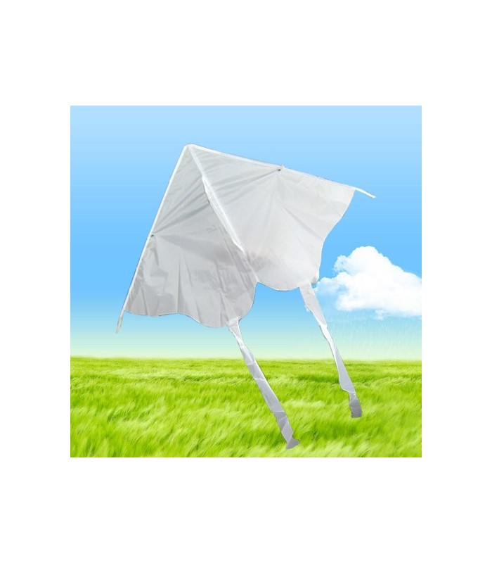 DIY Draw-it-yourself Butterfly Kite