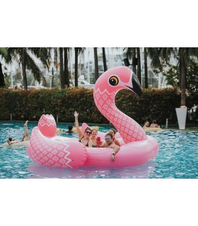 6-Seater Party Island Flamingo Float