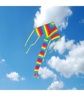 Rainbow Easy Flyer Kite