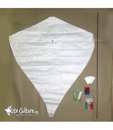 Tyvek Build a Diamond Kite Kit