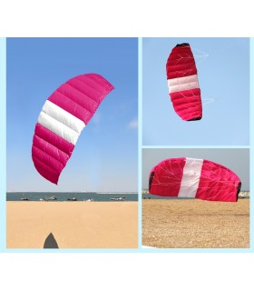 Trapeze 2.1 Power Foil Pink